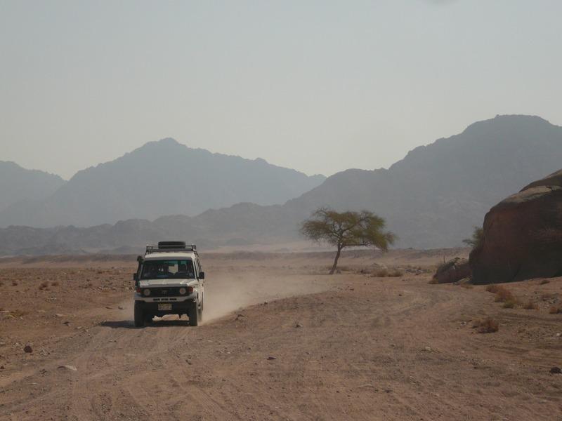 Абу-Галум