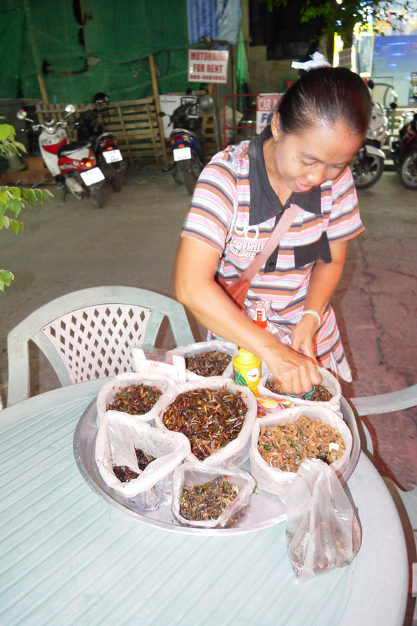 Насекомые в Таиланде