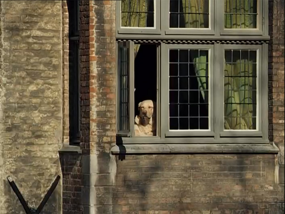 Собачка в Брюгге. Кадр из фильма