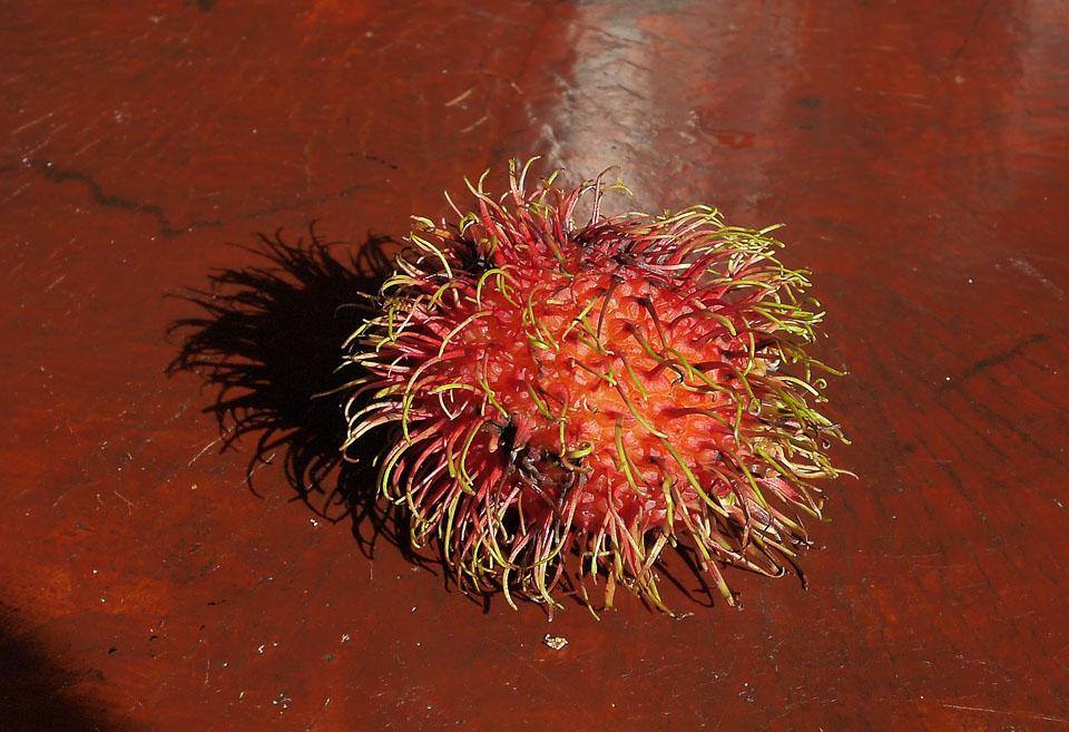 Фрукты из Тайланда фруктовые коробки экзотических фруктов