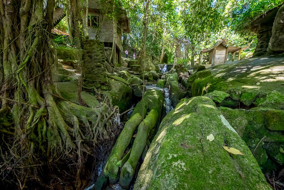 Магический сад на Самуи