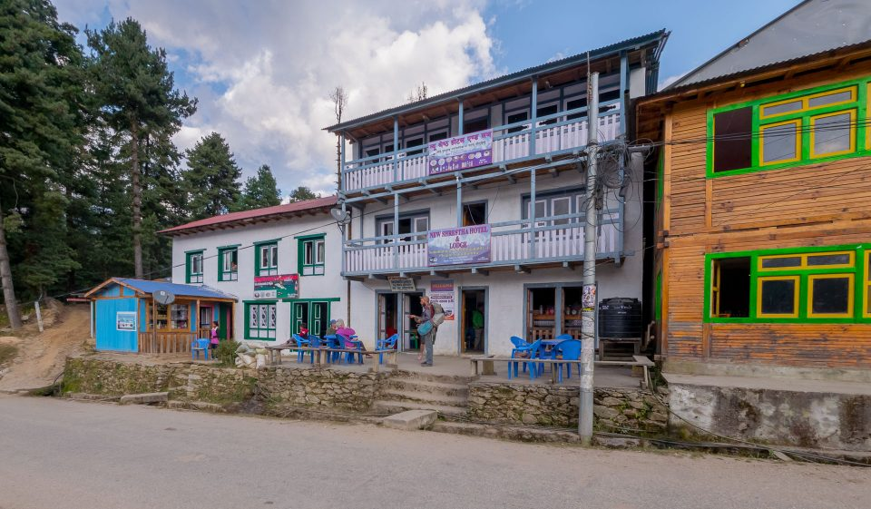 New Shrestha hotel