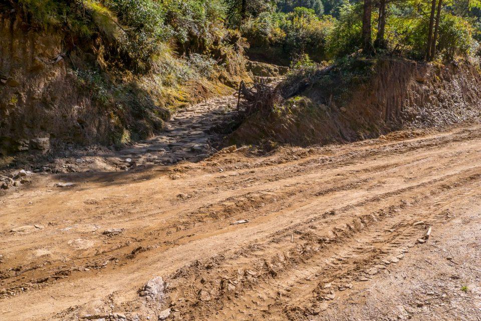 Пересечение тропы с дорогой
