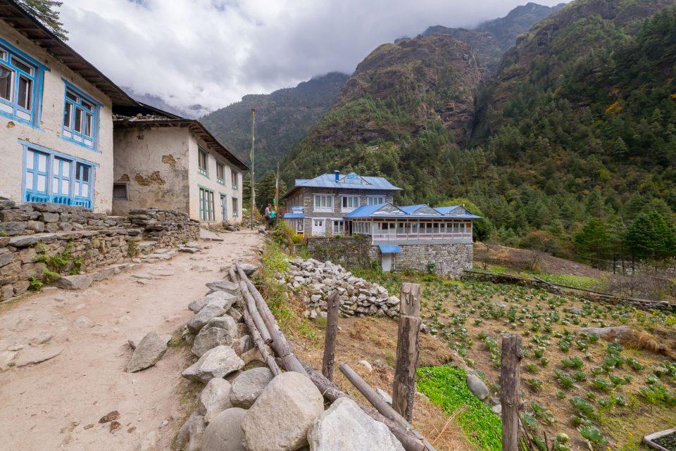 Tashi guesthouse в поселке Benkar