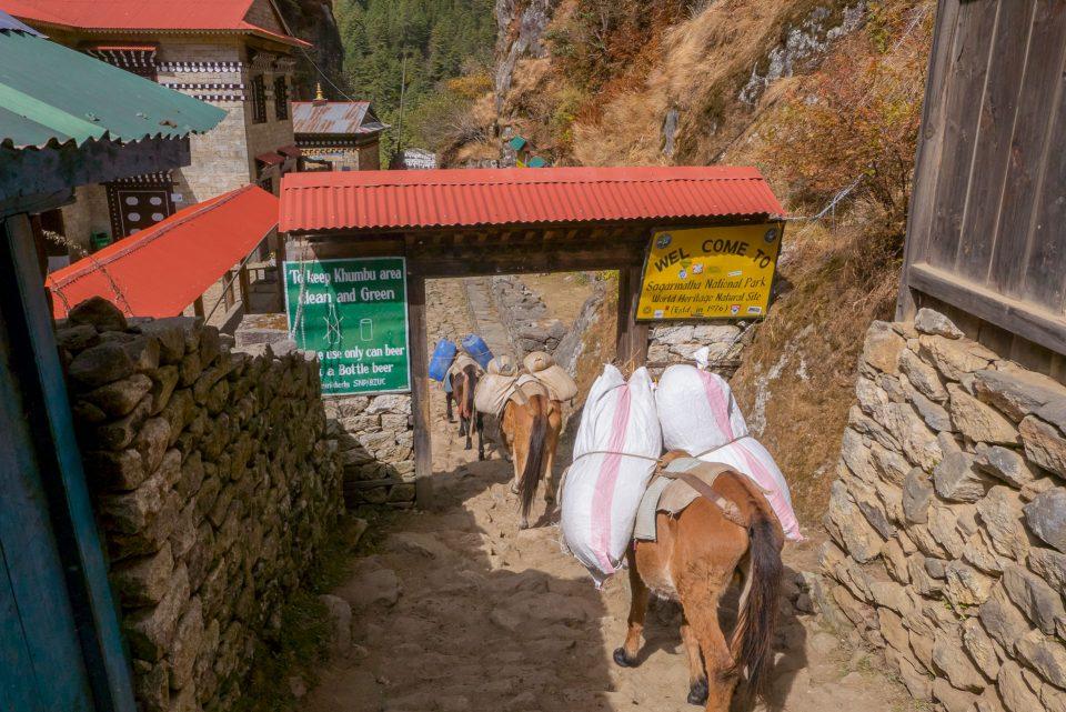 Вход в национальный парк Сагармата
