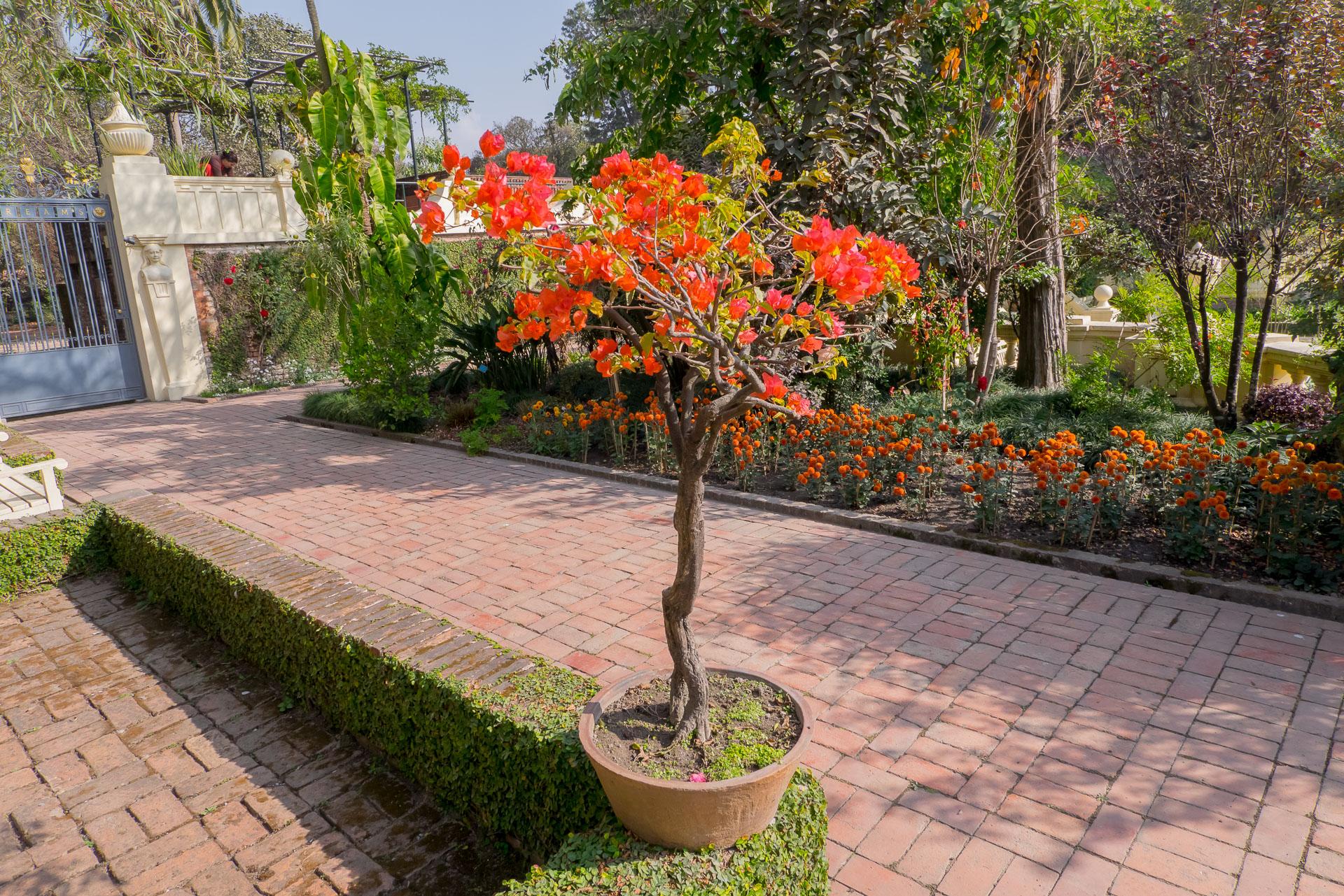 Сад мечты в Катманду